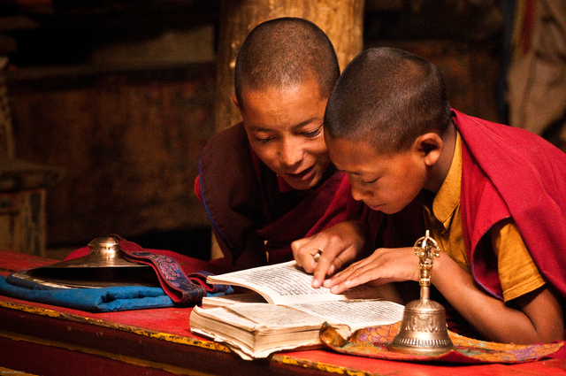 young monks india buddhism reading